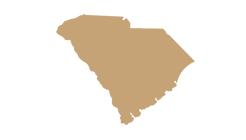Charleston-SC-map-silhouette-green