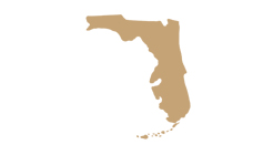 Tallahassee-FL-map-silhouette-green